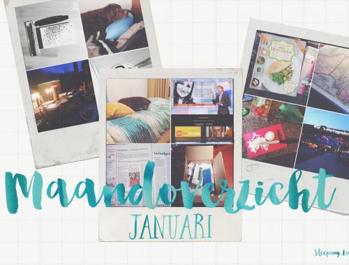 Meekijken in januari, een maandoverzicht